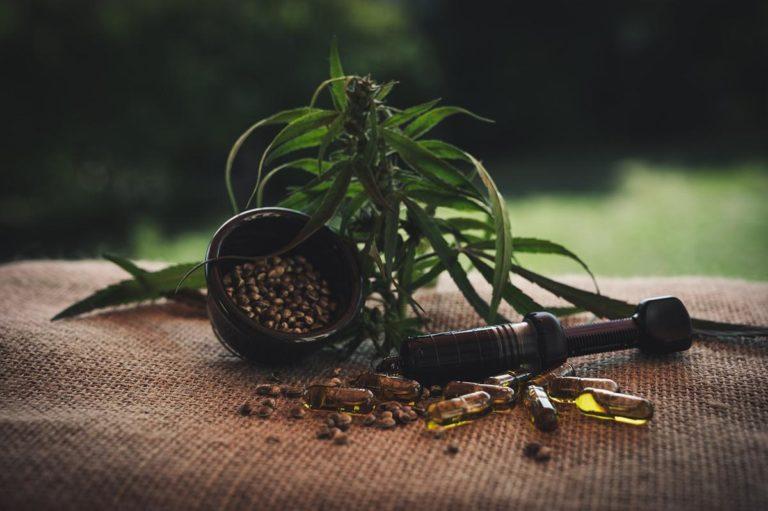 Co ma znaczenie przy wybieraniu sprzętu do hodowania marihuany?